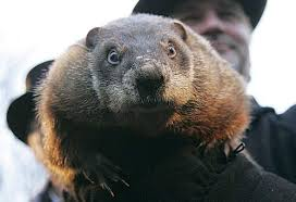 Groundhog Day: The Dumbest Holiday Ever?