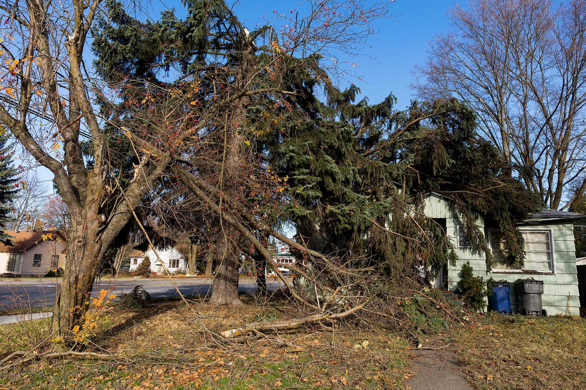 SHAWN GUST/PressTwo trees that had snapped in Tuesday's storm crashed onto a home at 533 W. Linden Avenue.